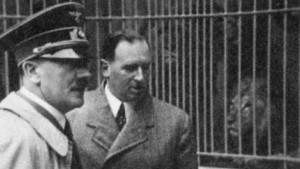 Brauner Willy im roten Nürnberg