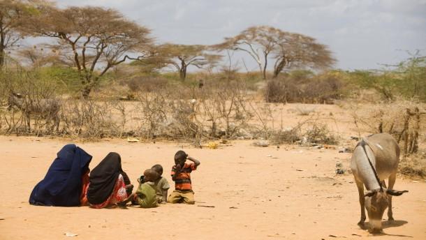 Dürre in Ostafrika - Die  Trockenheit in Kenia und die Situation im Flüchtlingslager in der Distrikthauptstadt Isiolo in der Provinz Eastern verschlimmert sich immer weiter.