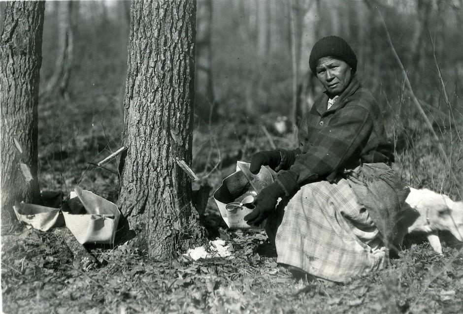 Schon die indianischen Ureinwohner wussten, wann der Ahornsaft in die Rinde steigt.