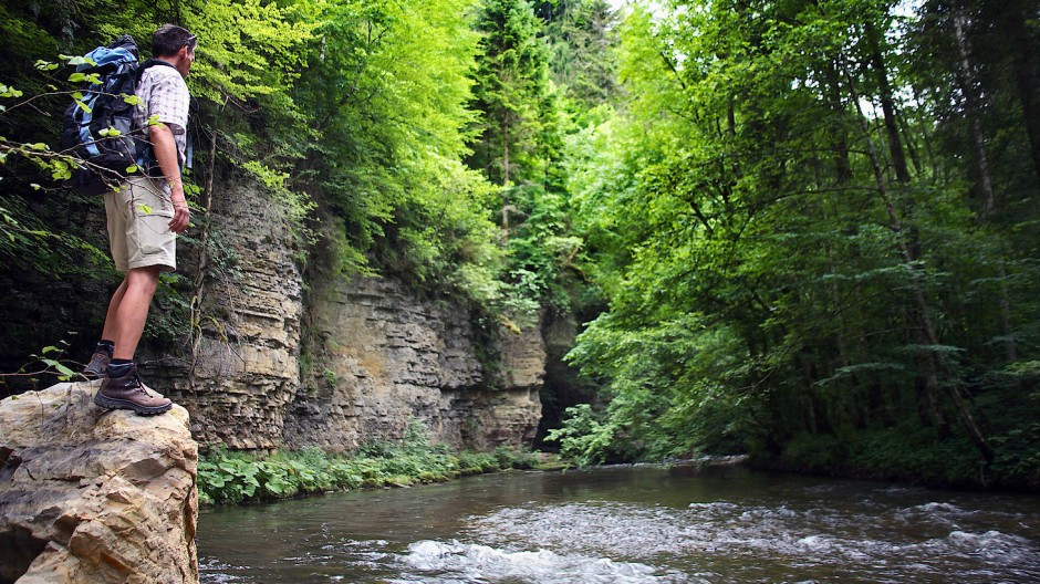 Und immer wieder sieht es aus wie im Märchenwald: Im Naturschutzgebiet Wutachschlucht.