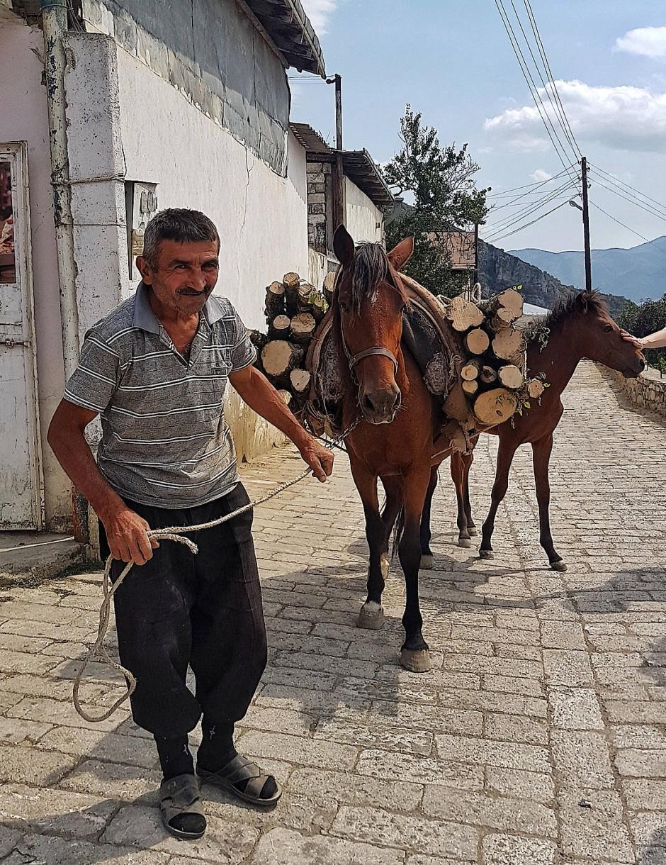 In Arzach kommt das Brennholz per Pferd zum Ofen.