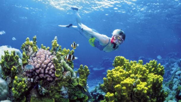 Für eine bessere Unterwasserwelt