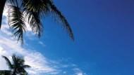 Nach dem Golf ein Glas Champagner im Sand: Picknick an der Anse Georgette
