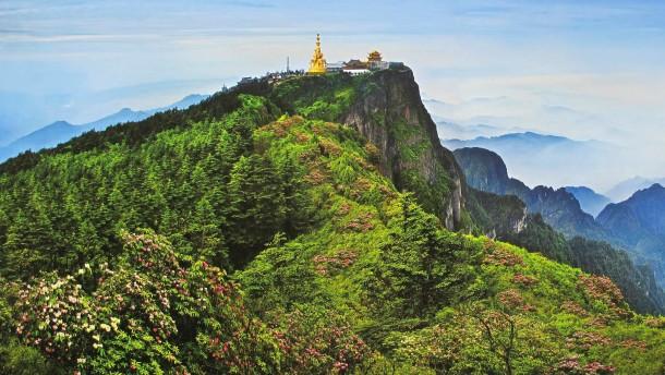 Buddhas Glück und Pfeffers Segen