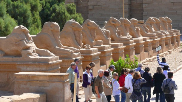 Sechshundertfünfzig Sphinxstatuen und keine Schlange