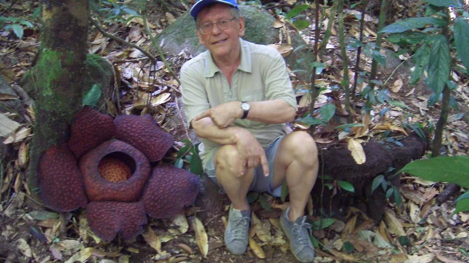 Herbert Feuerstein, 2007 neben einer Rafflesia auf Borneo.