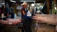 Ist der Thun versteigert, wird er bei den Händlern in der Markthalle zerlegt und verkauft.