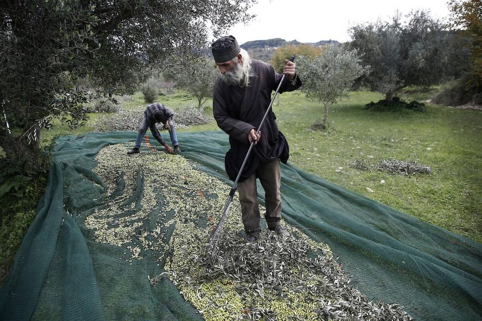 """""""Niemand kommt mehr zum Gottesdienst"""", klagt Nikos Raptis, Priester in Neochori. Auch er hat Ölbäume. Wie viele, weiß er nicht."""