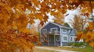 Sam war der Farben wegen nach Door County gekommen. Des Herbstlaubs wegen.