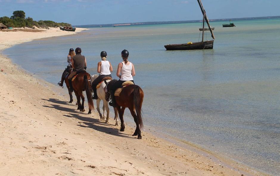 Von der Farm an den Strand: heute tragen die Pferde Touristen am Indischen Ozean entlang.