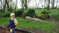 Ist der echt? Das Kind wundert sich über den schlafenden Riesen im Heligan-Garten.