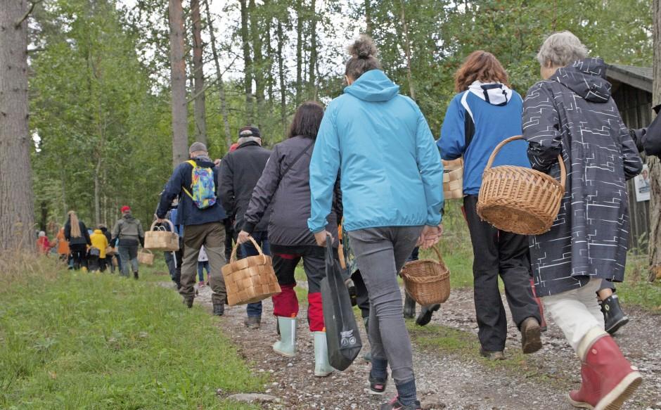 Die Jagd hat begonnen: Die Gruppe verschwindet mit Körben im Wald.