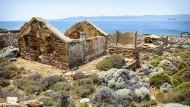Makronisos: Einst gefürchtetes Militärgefängnis, heute Heimstatt für eine Handvoll Viehhirten.