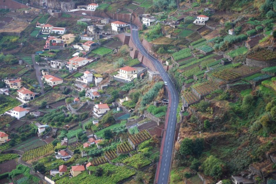Kletterkönig: So steil ist die Insel Madeira, dass die Trauben für den gleichnamigen Wein schwindelfrei sein müssen.