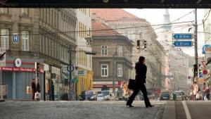 Eine Verkehrsader als Lebensraum