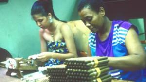 Die echten Havannas
