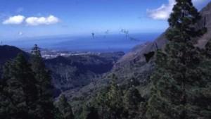 Wandern zwischen Vulkanen und Drachenbäumen