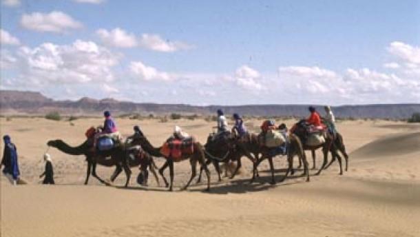 Tunesien für Wüsten-Einsteiger