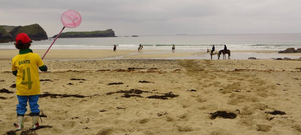 Seite 3 Familienurlaub In Cornwall Sturmische Begegnungen Nah Faz