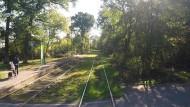 03: Harthweg - Waldfriedhof Goldstein