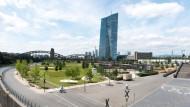 Hafenpark wird mit Sommerfest eröffnet