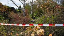 In Wald gefundene Knochen stammen von Säugling