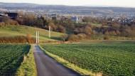 Mit Stäbchen: Diese Simulation zeigt, wie der Limesverlauf nahe Altenstadt kenntlich gemacht werden soll