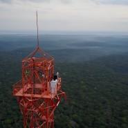 "Spitzenforschung: 325 Meter über dem Regenwald erhebt sich das ""Amazonian Tall Tower Observatory""."