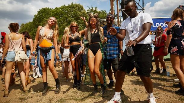 Naturschützer gegen Techno-Festival in Mainauen
