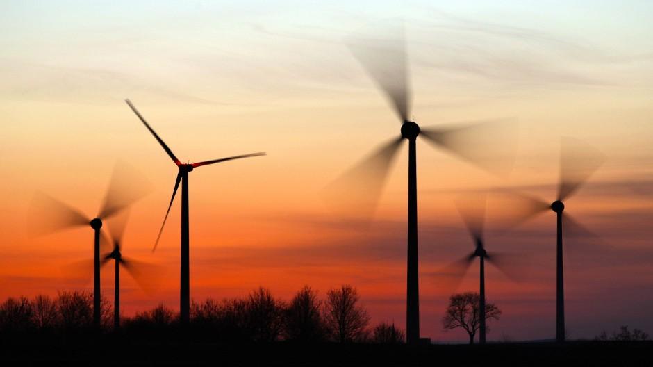 Ein bisschen Dämmerung für Windkraft: Der VGH stärkt die Rechte der Tiere.