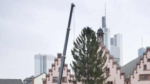 weihnachtsbaum um die h fte etwas d nn frankfurt faz. Black Bedroom Furniture Sets. Home Design Ideas