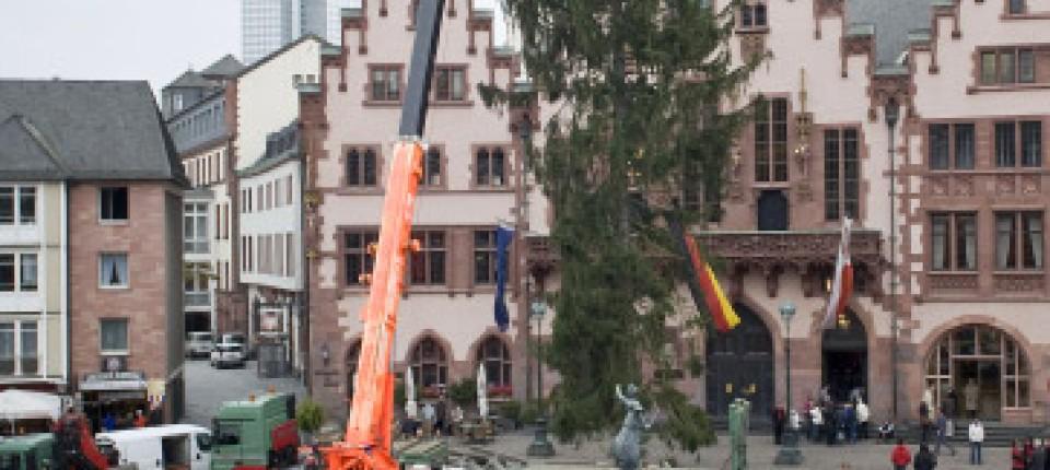 Weihnachtsbaum Frankfurt.Weihnachtsbaum Um Die Hüfte Etwas Dünn Frankfurt Faz