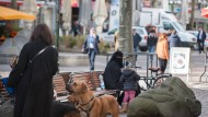 Burka-Verbot entzweit Schwarz-Grün