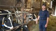 Weniger Milchkühe im Stall, weniger Verluste