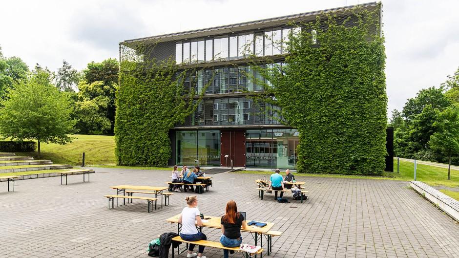 Es grünt so grün: An der Theologischen Hochschule Sankt Georgen in Oberrad rankt wilder Wein.