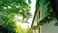 Ungepflegt und kaputt: In der Annasiedlung in Hanau lebt nur noch ein gutes Dutzend Menschen – in unwürdigen Zuständen.