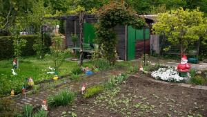 Der deutsche Garten, eine Ökoschande