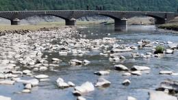 Niedriger Wasserstand sorgt für Umsatzeinbruch am Edersee
