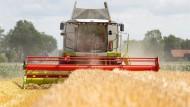 Sie fahren wieder: Bauern haben im Rhein-Main-Gebiet wie auch anderorts mit der Getreideernte begonnen