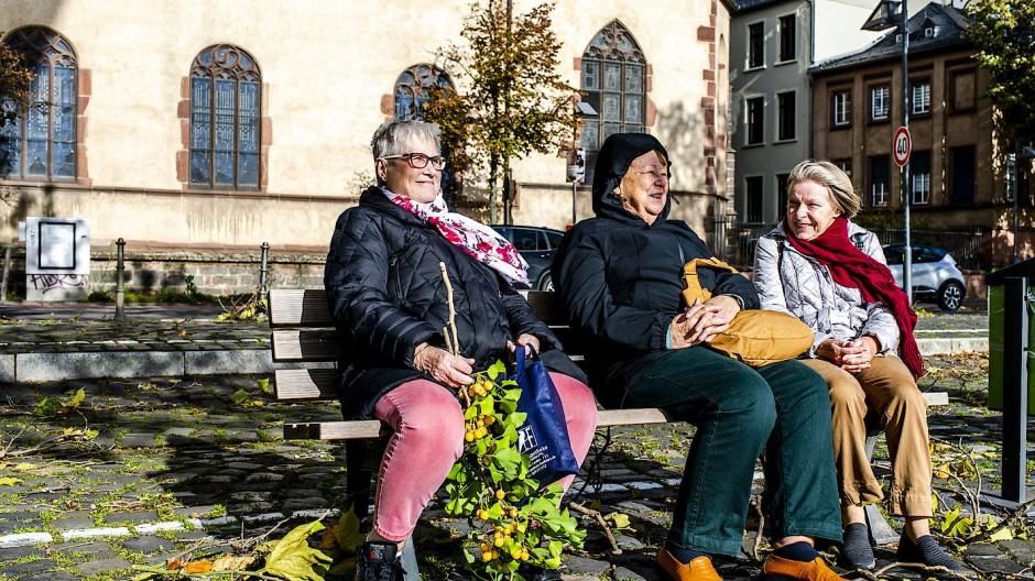 Entspannt im Sturm: Drei Damen sitzen mit einem vom Sturm abgerissenen Ast am Main.