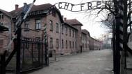 Tor zum Todeslager:Lange hat die Justiz SS-Wachleute wie jene aus Auschwitz-Birkenau nicht verfolgt. Jetzt ist es oft zu spät dafür.