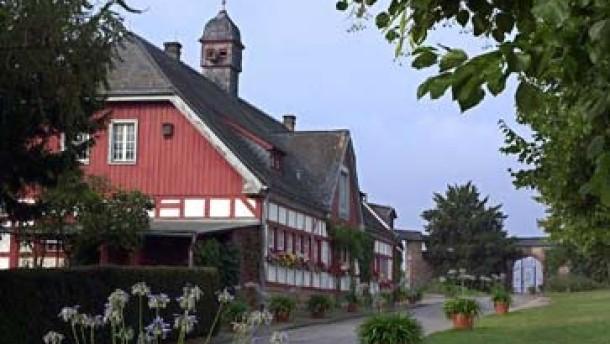 Staatsdomäne Steinberg/Eltville