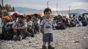 Wachsende Zahl minderjähriger Flüchtlinge