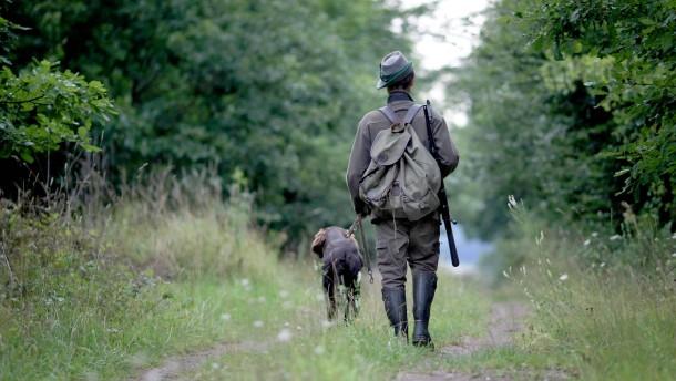 Gericht: Waldbesitzer muss Jagd nicht dulden