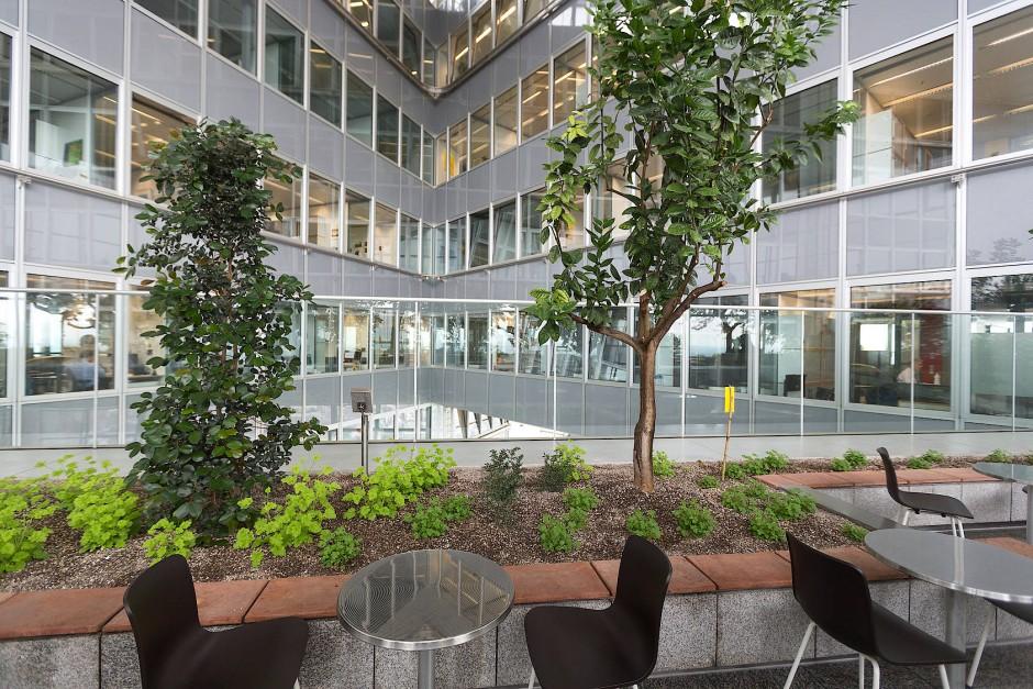 Grünanlage: Blick ins Foyer des Commerzbank-Turms