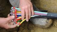 Gebündelt vergraben: ein Glasfaser-Kabel mit farbigen Einzelsträngen