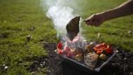 Fechenheim will Grillen im Spielpark verbieten