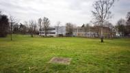Neues Gymnasium soll Gesellschaftswissenschaften pflegen