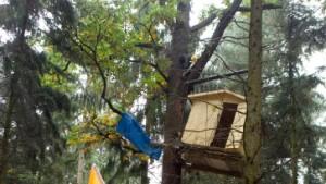 Furcht vor dem Einsatz im Wald