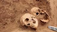 Hier ist die Herkunft bereits geklärt: Diese Schädel wurden 2015 auf einer Baustelle in Frankfurt gefunden. Sie stammen aus einem Grab mit napoleonischen Soldaten.